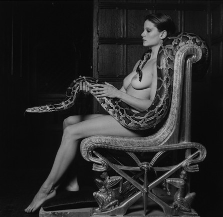 Robert Mapplethorpe1